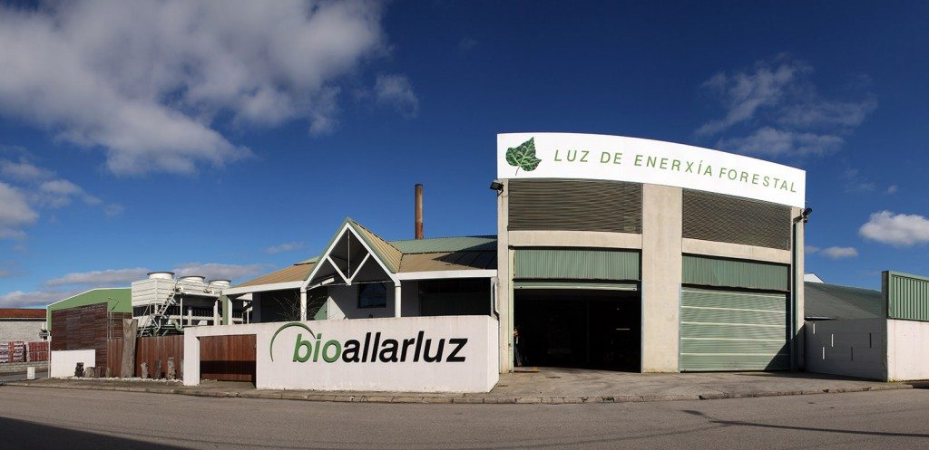 planta-biomasa-bioallarluz